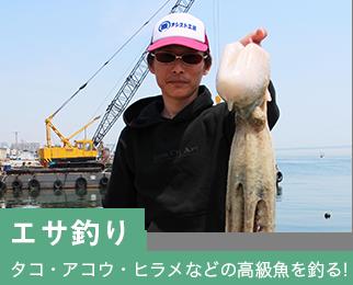 エサ釣りアコウ・ヒラメなどの高級魚を釣る!